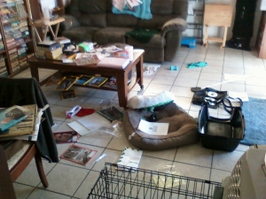 Gracie's mess 1.23.14