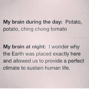 Brain at Night